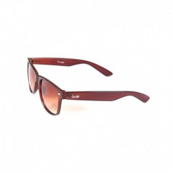 Elligator Brown Wayfarer Sunglasses