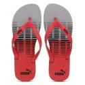 Mens Slippers & Flip Flops